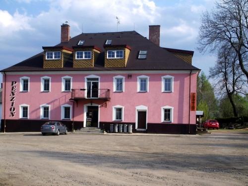 Foto - Accommodation in Mlýnický Dvůr - Rodinný penzion v Orlických horách