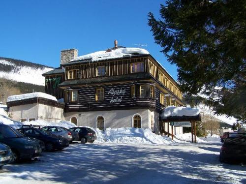 Foto - Accommodation in Špindlerův Mlýn - Alpský hotel