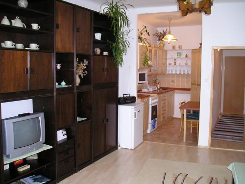 Foto - Accommodation in Volary - APARTMENTS ŠUMAVA