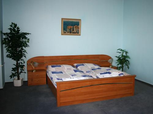 Foto - Accommodation in Havlíčkův Brod - Penzion STARR