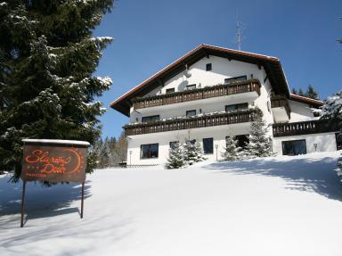 Foto - Accommodation in Bayerisch Eisenstein - Penzion Sluneční Dvůr