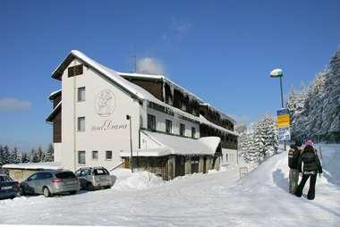 Foto - Accommodation in Benecko - hotel Diana ***
