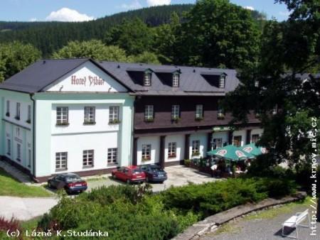 Foto - Accommodation in Karlova Studánka - Hotel Džbán