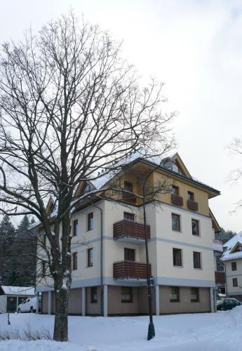 Foto - Accommodation in Deštné v Orlických horách - Apartmán Deštné v OH