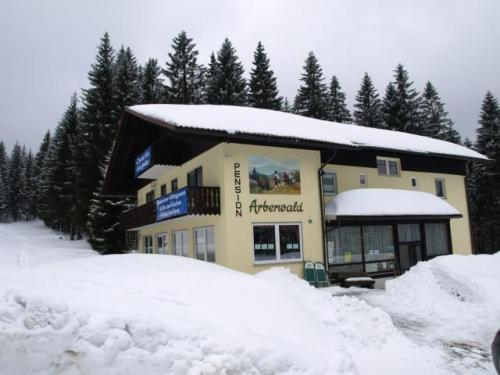 Foto - Accommodation in Bayerisch Eisenstein - Pension Arberwald