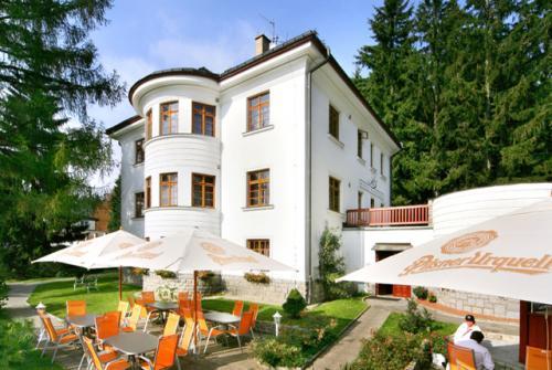 Foto - Accommodation in Špindlerův Mlýn - Hotel Bedřiška